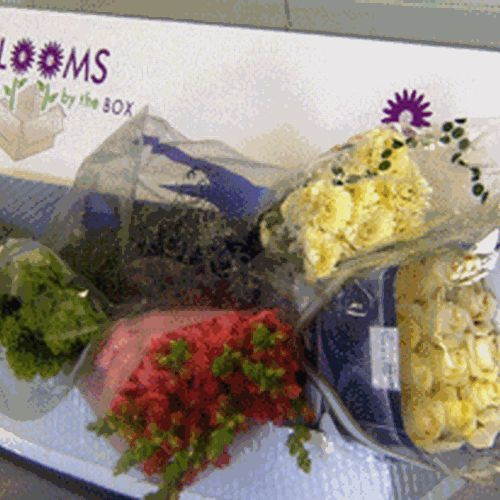 Wholesaler's Choice DIY Flower Pack (Small)