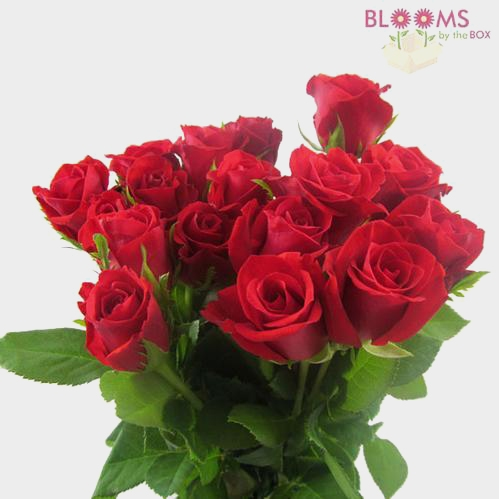 Sweetheart Roses Red