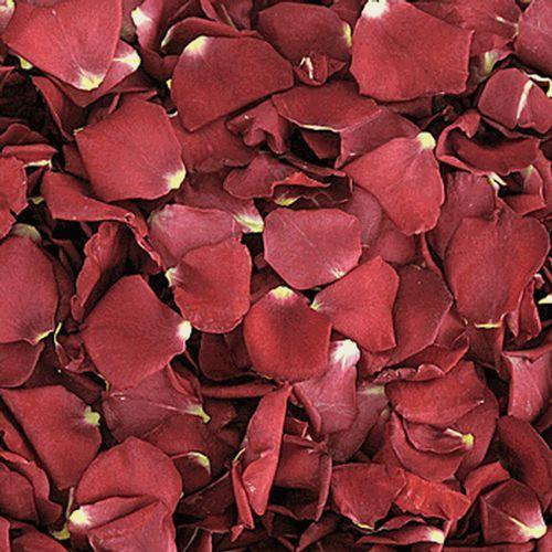 Deep Pink & Red FD Rose Petals (30 Cups)