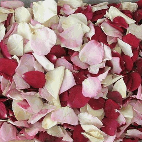 Bridal Bliss Blend FD Rose Petals (30 Cups)