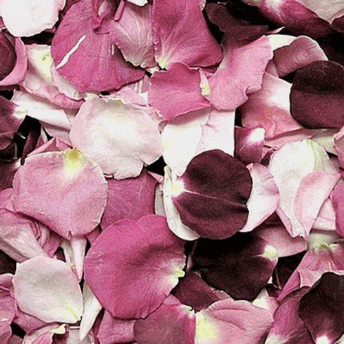 Endless Love Blend FD Rose Petals (30 Cups)