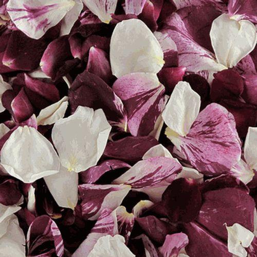 Seduction Blend FD Rose Petals (30 Cups)