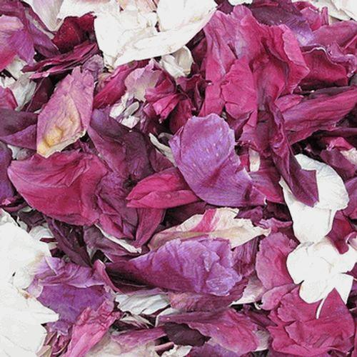 Assorted Color FD Peony Petals (30 Cups)