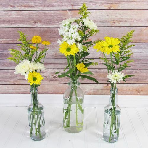 Blooms Enchanted Meadow Wildflower Pack