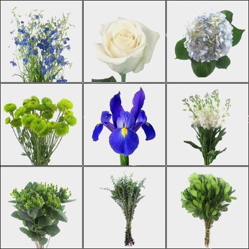Dreamy Blue DIY Wedding Flower Pack