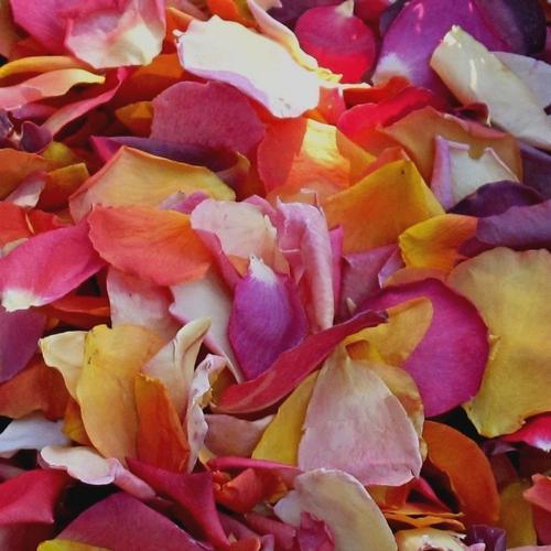 Mclenglish Fd Rose Petals (30 Cups)