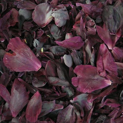 Dark Blend Fd Peony Petals (30 Cups)