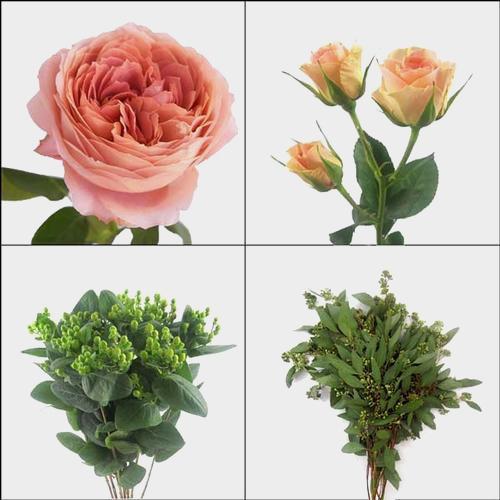 Garden Rose DIY Flower Pack