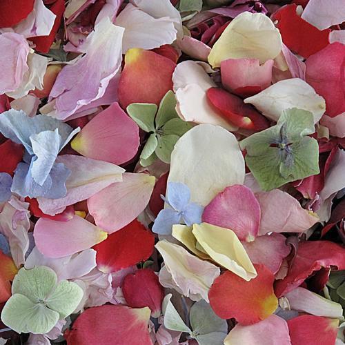 Assorted Flower Petals (30 Cups)