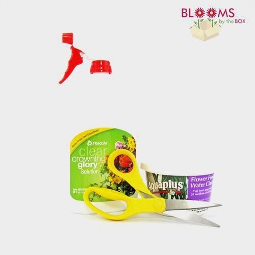 DIY Essentials Floral Supply Kit