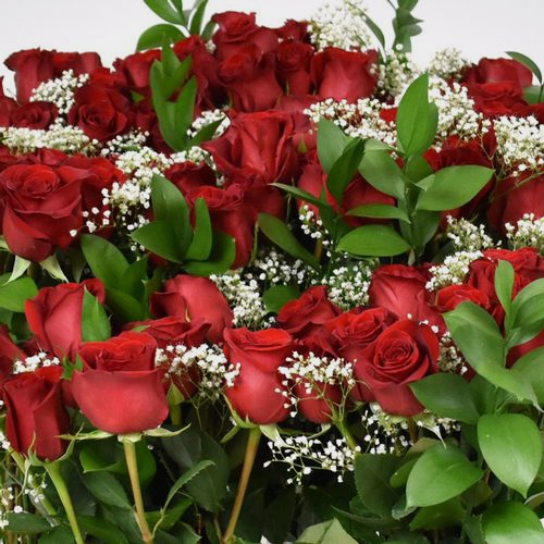 Rose Bouquet 12 Stem - Red Freedom 50 cm