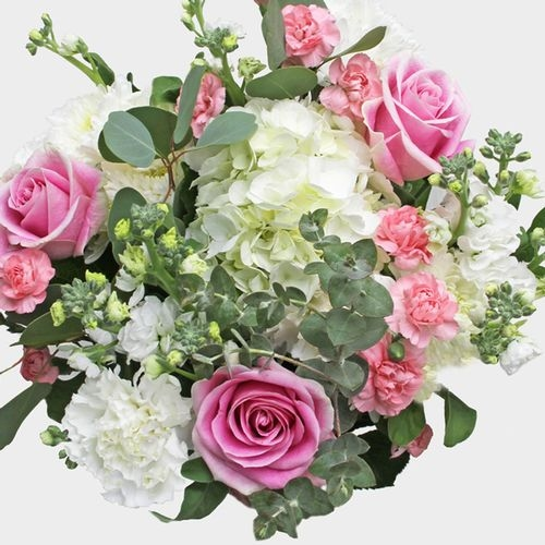 Mixed Bouquet 21 Stem - Touch Of Blush